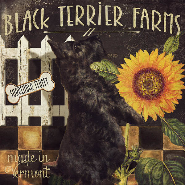 Wall Art - Painting - Black Terrier Farms by Mindy Sommers