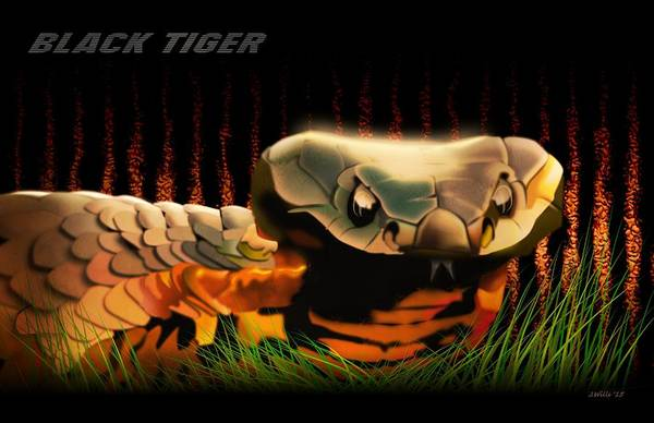 Australian Wildlife Digital Art - Black Tiger Snake by John Wills