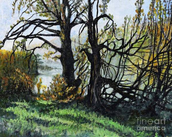 Birches Painting - Black Trees Entanglement by Suzann's Art