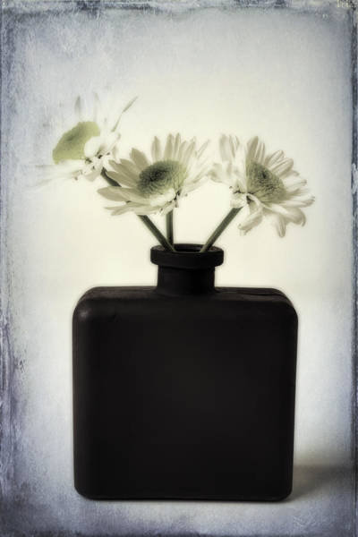 Wall Art - Photograph - Black Vase With Poms by Garry Gay