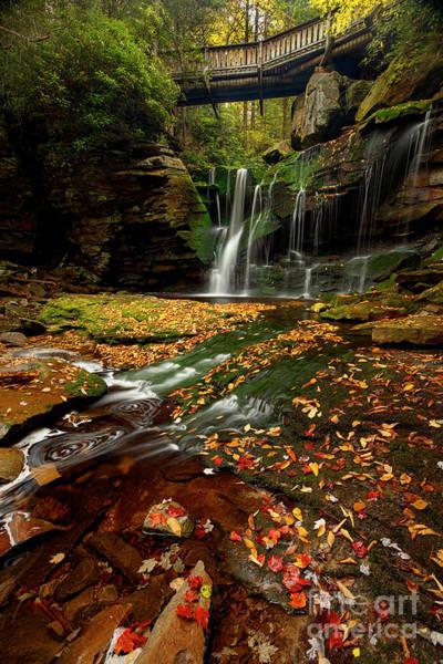 Allegheny Mountains Wall Art - Photograph - Black Waterfalls  2 by Emmanuel Panagiotakis