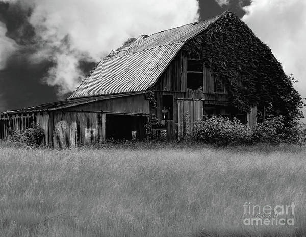 Wall Art - Photograph - Black White Barn by Elijah Knight