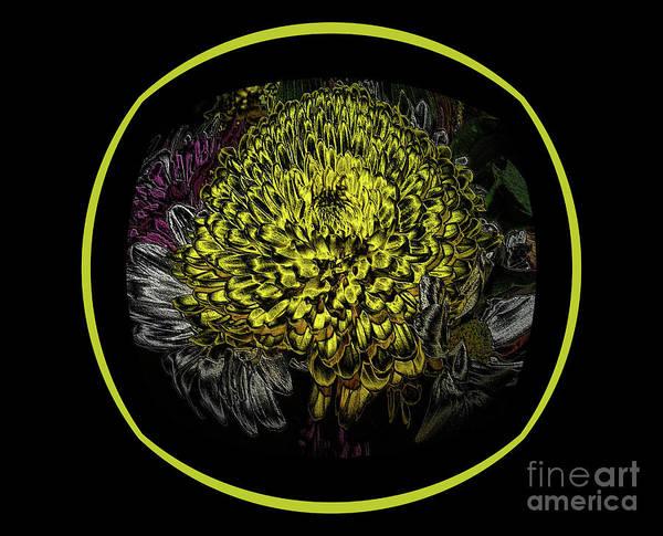 Painting - Black Yellow  Created Flowers Card by Oksana Semenchenko