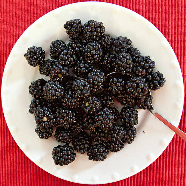 Photograph - Blackberries On A Plate by Tatiana Travelways