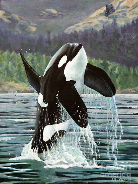 Blackfish Wall Art - Painting - Blackberry - J27 by Jordan Parker
