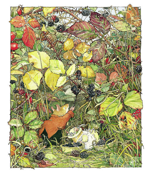 Wall Art - Drawing - Blackberry Picking by Brambly Hedge