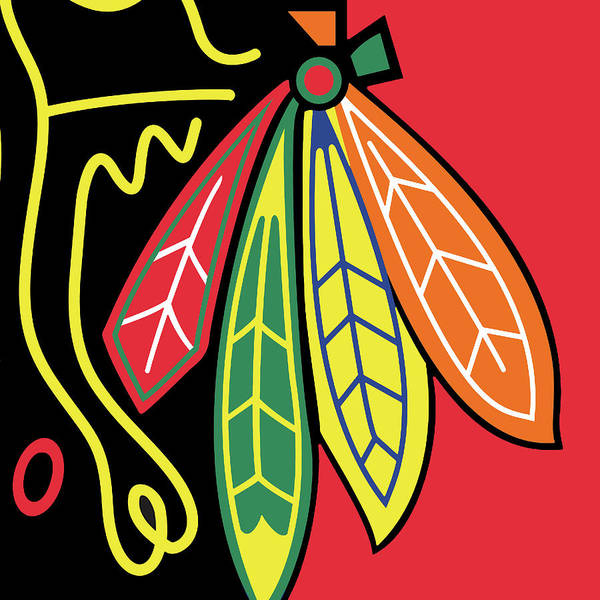 Painting - Blackhawks Of Chicago Colorful Feather Design by Tony Rubino