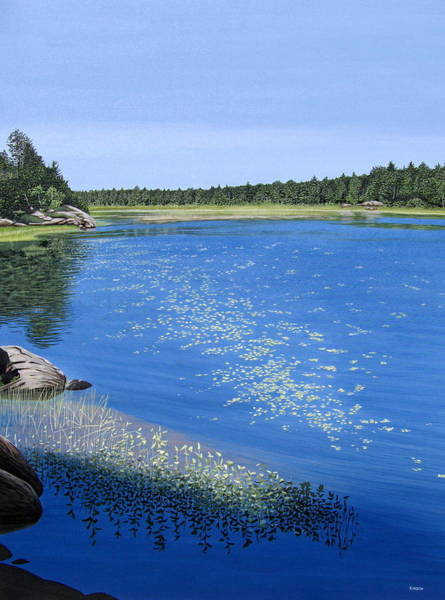 Lilly Pad Painting - Blackstone Bog by Kenneth M Kirsch