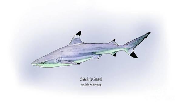 Angling Art Painting - Blacktip Shark by Ralph Martens
