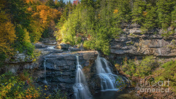 Photograph - Blackwater Falls In Autumn by Michael Ver Sprill