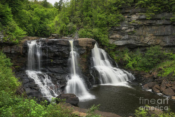 Photograph - Blackwater Falls  by Michael Ver Sprill