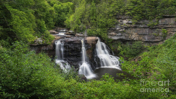 Photograph - Blackwater Falls State Park by Michael Ver Sprill