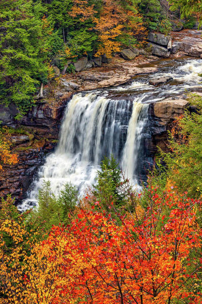 Steve Harrington Wall Art - Photograph - Blackwater Falls  by Steve Harrington
