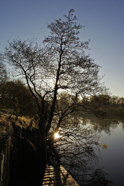 Photograph - Blackwater River by Colin Clarke