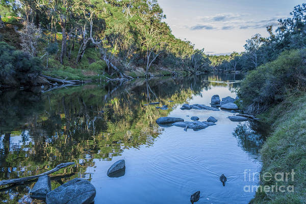 Photograph - Blackwood River Rocks, Bridgetown, Western Australia by Elaine Teague