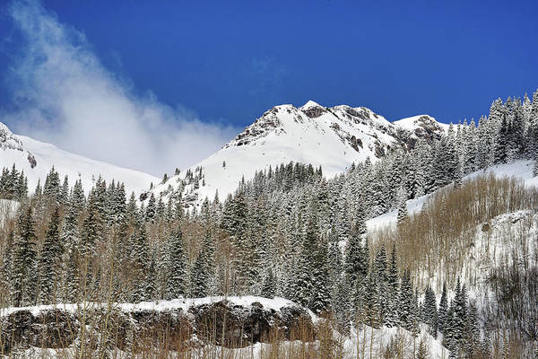 Photograph - Blanketed In Snow by Leda Robertson