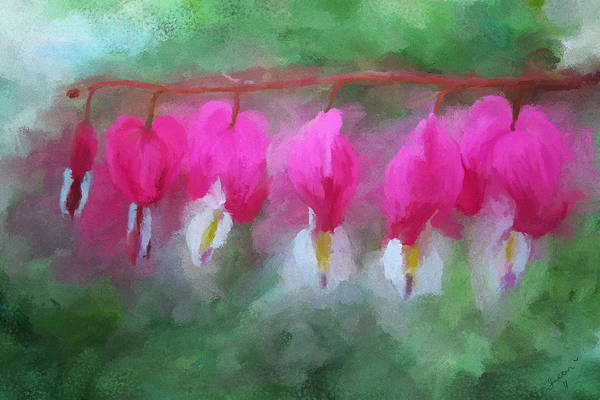 Painting - Bleeding Hearts by Susan Kinney