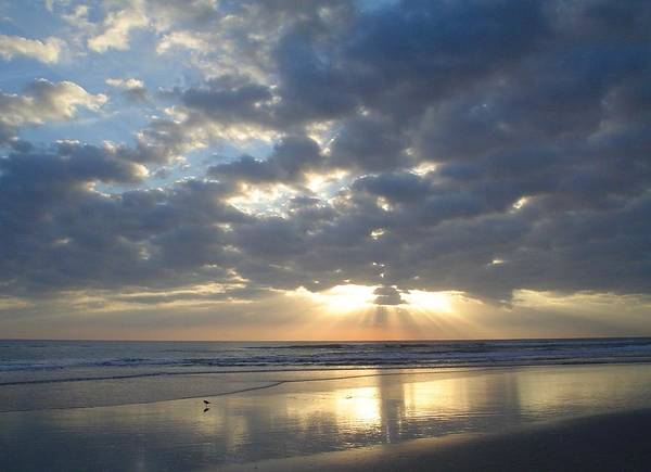 Flagler Photograph - Blessed New Day by Cheryl Waugh Whitney