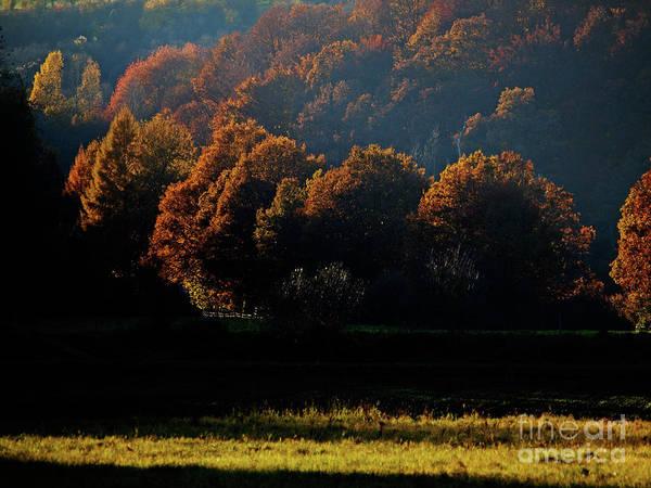 Photograph - Bliesgau_23 by Jorg Becker
