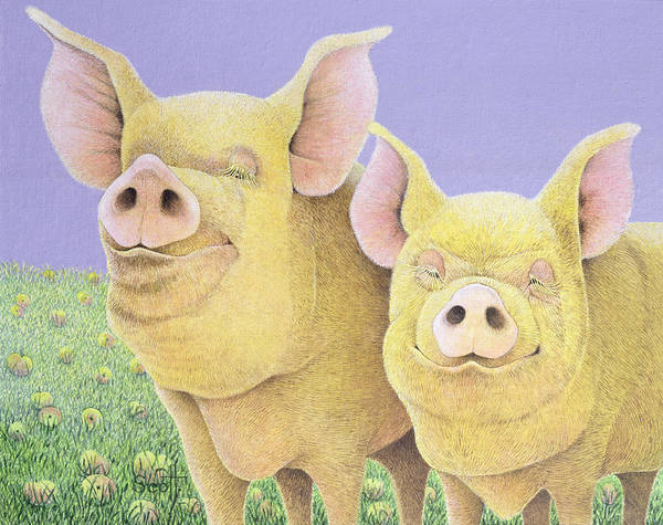 Pig Drawing - Bliss by Pat Scott