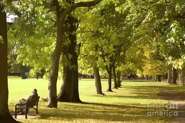 Park Bench Mixed Media - Blissful Meditation In The Park by Clive Littin