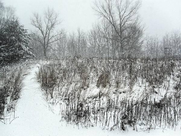 Photograph - Blizzard, Wisconsin 2006 by Chris Honeyman