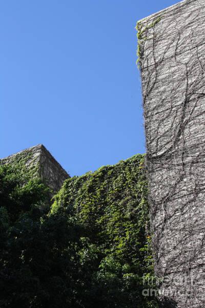 Photograph - Block Building by Balanced Art