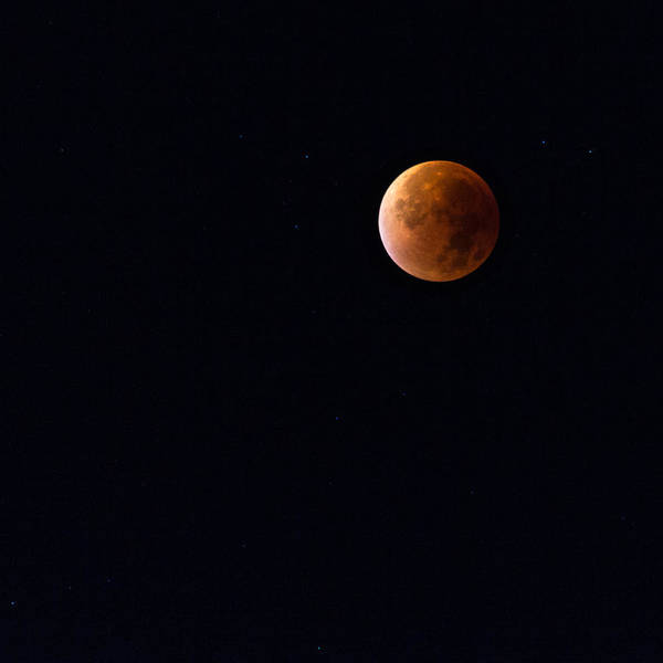 Photograph - Blood Moon by Andreas Levi
