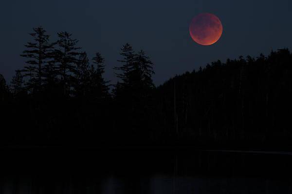 Photograph - Blood Moon At Fairy Lake by Randy Hall