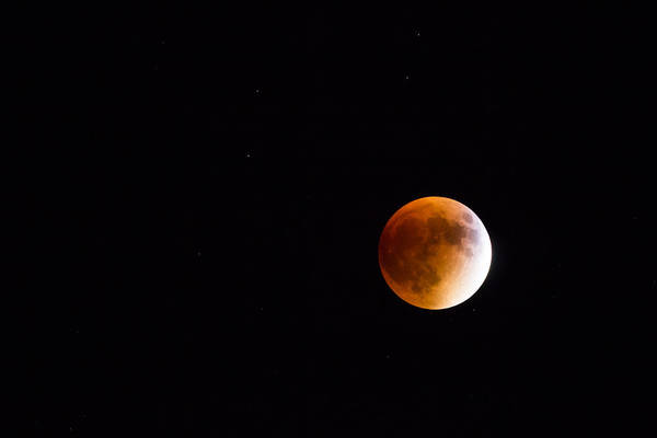Photograph - Blood Moon Eclipse 2015 by Kirkodd Photography Of New England