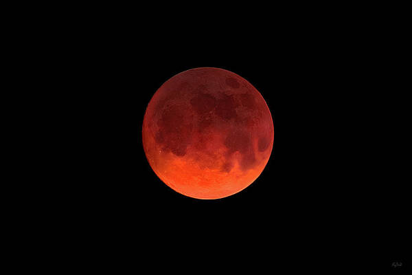 Photograph - Blood Moon by Greg Norrell