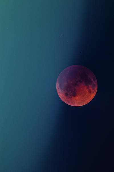 Photograph - Blood Moon II by Ryan Heffron