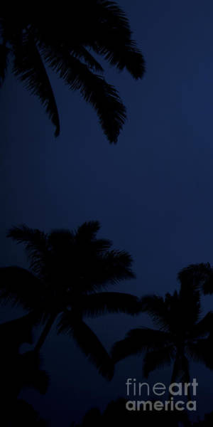 Coconut Trees Photograph - Blood Moon In Hawaii  - Triptych   Part 1of 3 by Sean Davey