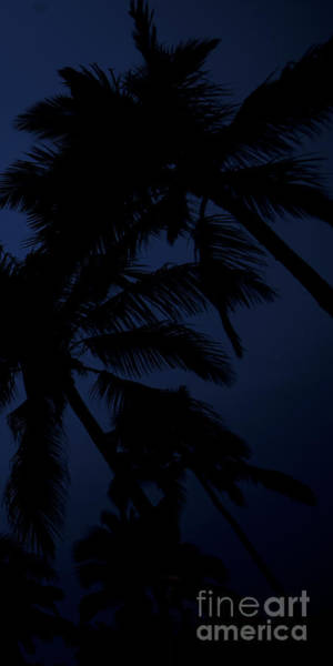 Coconut Trees Photograph - Blood Moon In Hawaii  - Triptych   Part 3 Of 3 by Sean Davey