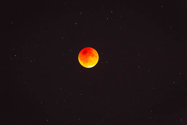 Photograph - Blood Moon And Stars by Jack R Perry