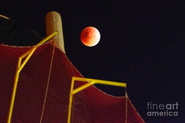 Photograph - Blood Moon Lunar Eclipse by James Brunker