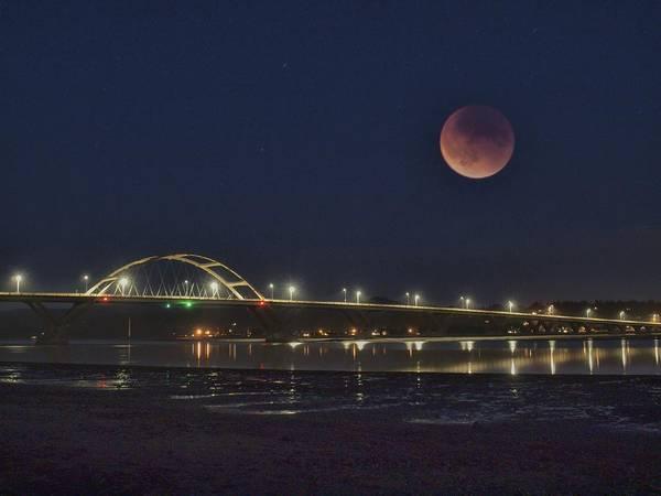 Blood Moon Over Alsea Bay Art Print