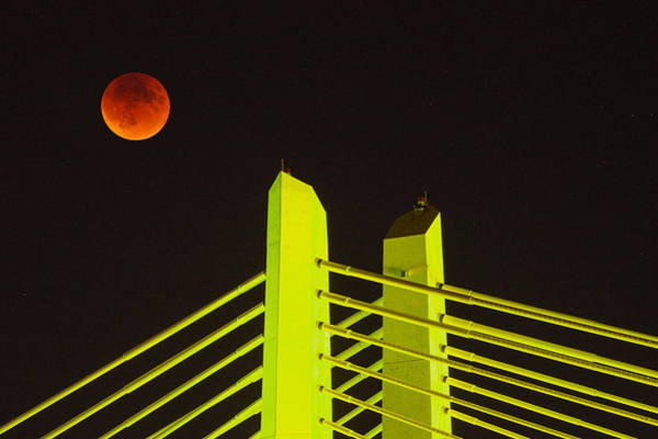 Wall Art - Photograph - Blood Moon Over The Tillikum Crossing by Patrick Campbell