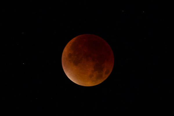 Photograph - Blood Moon Super Moon 2015 Totality by Clare Bambers