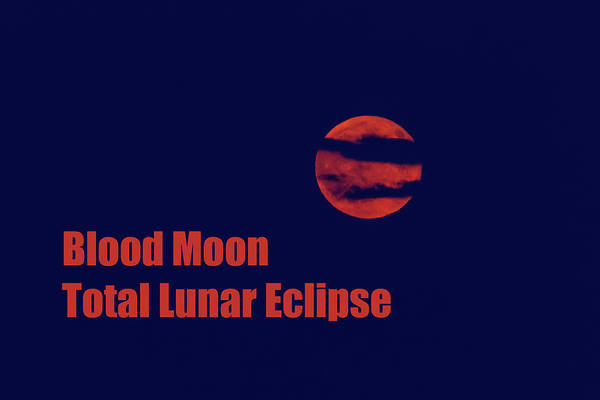 Photograph - Blood Moon - Total Lunar Eclipse by James BO Insogna