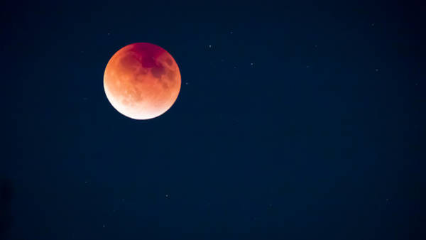 Photograph - Blood Moon by Windy Corduroy