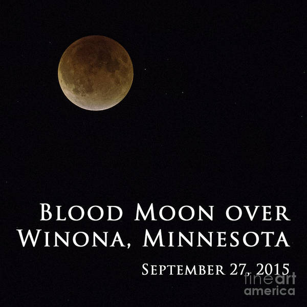 Photograph - Blood Moon Winona Minnesota by Kari Yearous