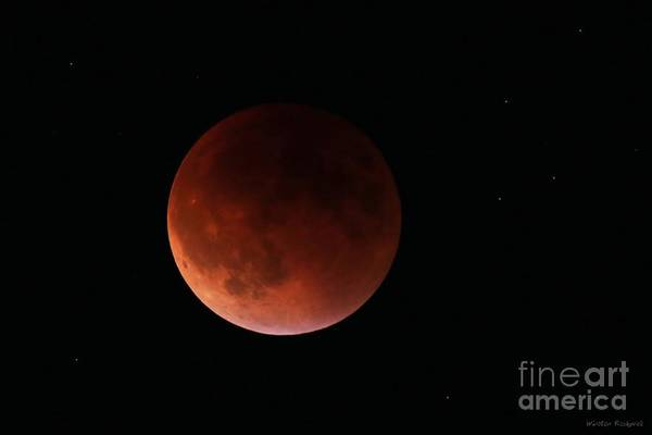 Wall Art - Photograph - Blood Moon by Winston Rockwell