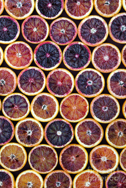 Citrus Fruit Photograph - Blood Oranges Pattern by Tim Gainey
