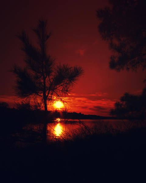 Photograph - Blood Red Sunset by Pete Federico