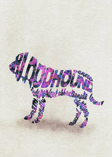 Painting - Bloodhound Dog Watercolor Painting / Typographic Art by Inspirowl Design