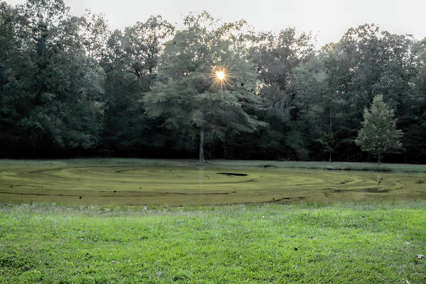 Photograph - Bloody Pond Shiloh National Military Park Tennessee by WildBird Photographs