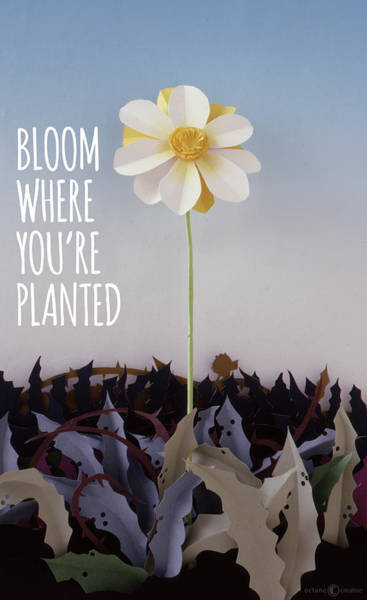 Sculpture - Bloom Where Planted Poster by Tim Nyberg