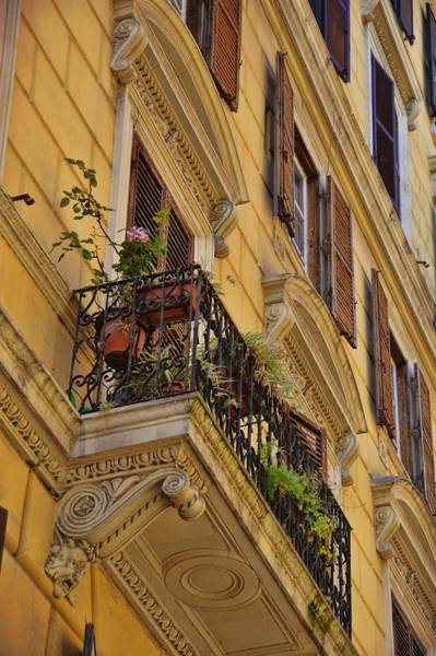 Photograph - Blooming Balcony by JAMART Photography