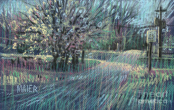 Blooming Tree Drawing - Blooming Bradford by Donald Maier